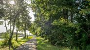 Nu ook petitie tegen bomenkap voor bouw River Terminal Roeselare