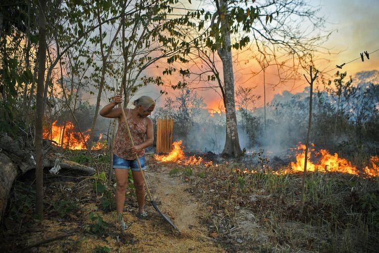 Brazilië is samen met de VS de grootste producent van soja ter wereld. Boeren verbranden het oerbos om het vrijgekomen land te kunnen verbouwen. Beeld AFP