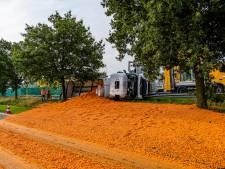 Snelweg bezaaid met duizenden wortels door gekantelde vrachtwagen op A58