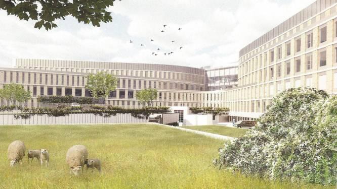 Nieuwbouw Slingeland Ziekenhuis aan A18 gaat door: ziekenhuis wordt kleiner en minder duur