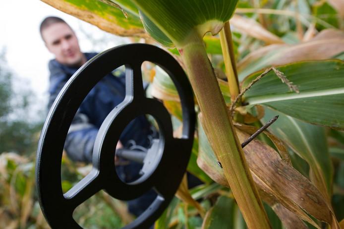 In de mais zijn opnieuw spijkers gevonden.