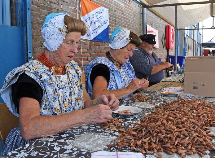 Garnalen pellen tijdens de Visserijfeesten in Breskens in 2018.
