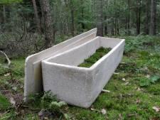 Deze 'levende doodskist' laat overledenen weer een worden met de natuur