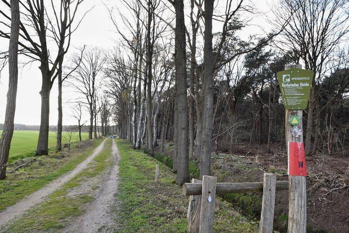 Aan de bordjes op de bomen is te zien dat er dit weekend een paastocht gehouden wordt over dit pad.