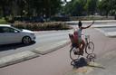 Een 'vrije rechtsaf strook' zou kunnen helpen op de rotonde, denkt de Fietsersbond Zwolle. Dat is een extra lijn op het fietspad. Automobilisten zien aan de plek waar de fietser rijdt of-ie rechtdoor gaat of juist rond wil.