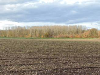 Vlaams minister Diependaele zet het licht op groen voor de opknapbeurt van Landschap Turfputten in Aarschot.