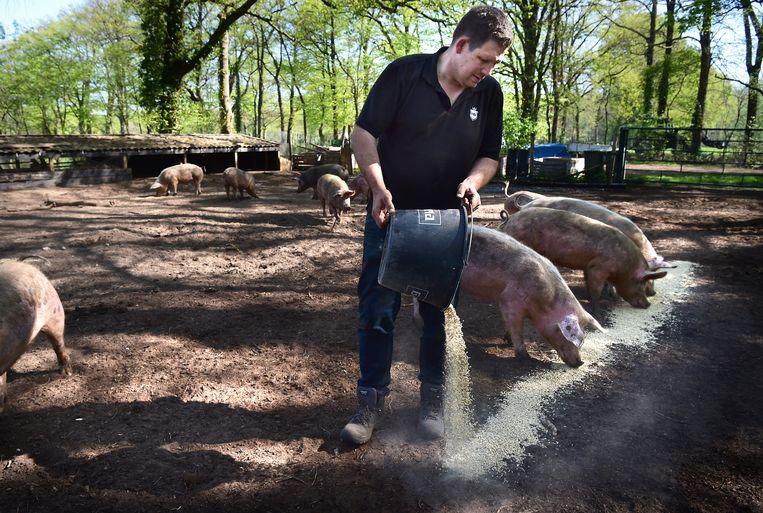 Boxtel: Herenboeren Wilhelminapark is een coöperatie van burgers, waarbij de boer vraaggestuurd werkt en produceert, exclusief voor de deelnemers. Beeld Marcel van den Bergh
