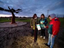 Wensboom daagt uit na te denken over toekomst Park Lingezegen; 'Samen maken we het park mooier'