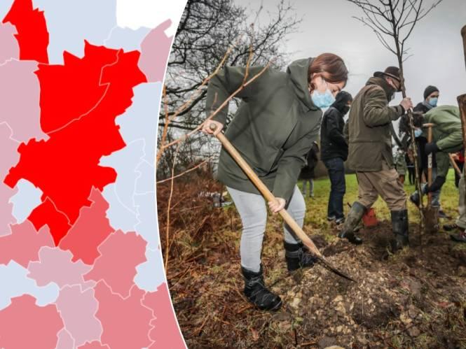 IN KAART. Het gaat niet goed met het Bosuitbreidingsplan en blijkbaar is dat ook niet zo belangrijk. Check hier de cijfers van jouw gemeente