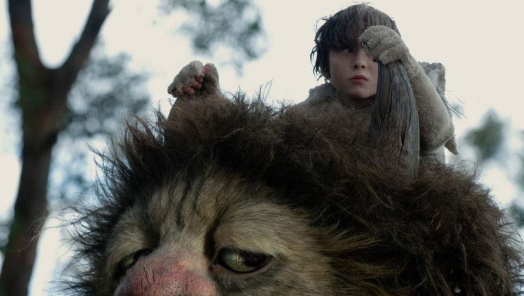 Max Records als Max in Where the Wild Things Are van Spike Jonze. Beeld