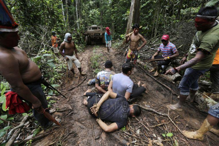 Ka'apor-indianen hebben illegale houthakkers gevangen genomen op hun land in de amazone Beeld Reuters