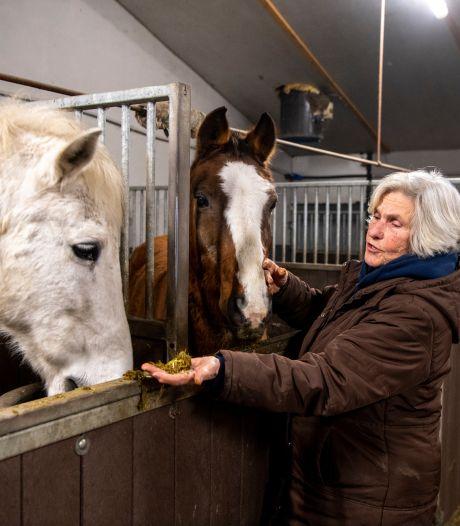 Paarden van Rika (72) voorlopig gered, maar na juni dreigt de slager alsnog