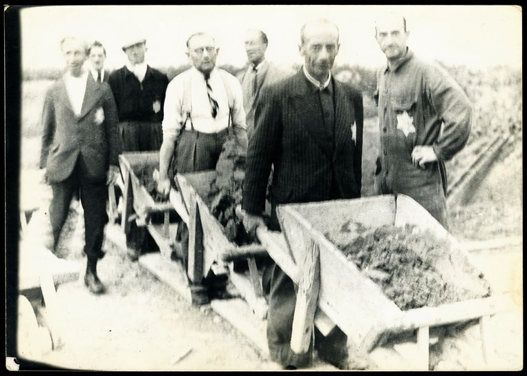 Joodse mannen verrichten dwangarbeid in het Amsterdamse Bos.  Beeld Joods Historisch Museum
