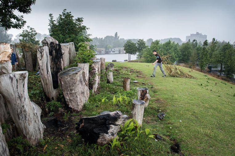 In feite is Parkeiland een enorme bol van gras, met een babyheuveltje ernaast waar een klimrek op houten palen staat. Beeld Mats van Soolingen