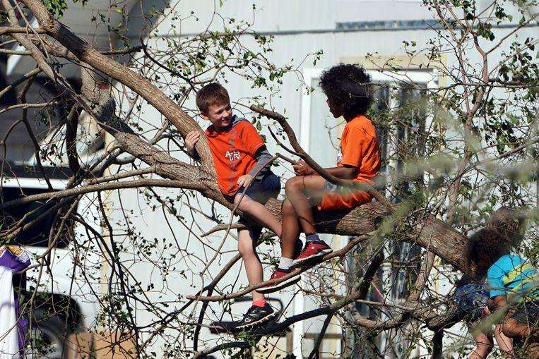 Kinderen spelen in een ontwortelde boom in Mexico Beach.
