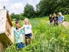 Met een Toekomsttuin sluit de Kinderraad het jaar af: 'Raad van Hilvarenbeek kan nog een voorbeeld aan deze kinderen nemen'
