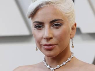 Vijf verdachten van ontvoering honden Lady Gaga opgepakt, onder wie vrouw die hen terugbracht
