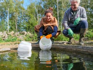 Minister Demir zet sterk bedreigde vroedmeesterpadjes uit in steengroeve Blaivie
