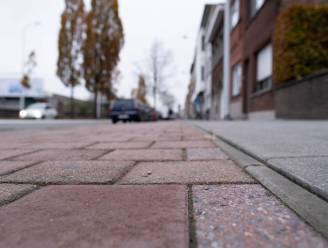 Vlaanderen vernieuwt fietspaden op Leuvensesteenweg, met eenrichtingsverkeer tot gevolg