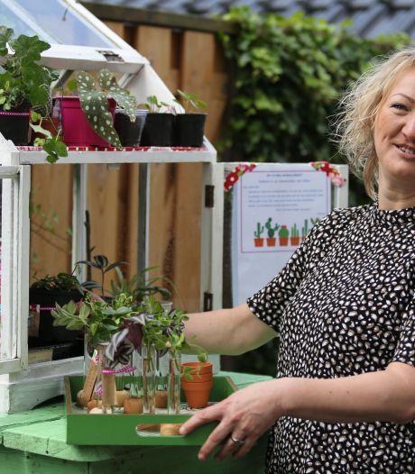 Wietske bezorgt Wijhe eerste plantenbieb: 'Mijn tuin is te klein voor alles wat ik wil'