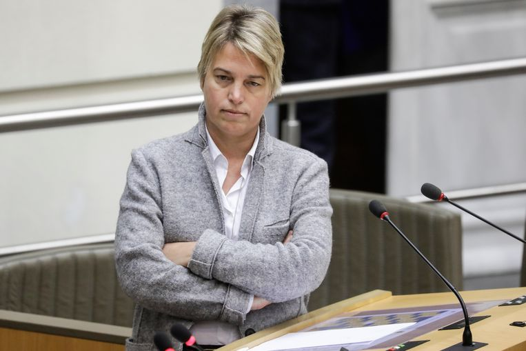 Vlaams minister van Leefmilieu Joke Schauvliege (CD&V). Beeld BELGA