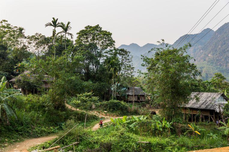Uitzicht op de bergen van Eo Ken. Beeld Marie Wanders