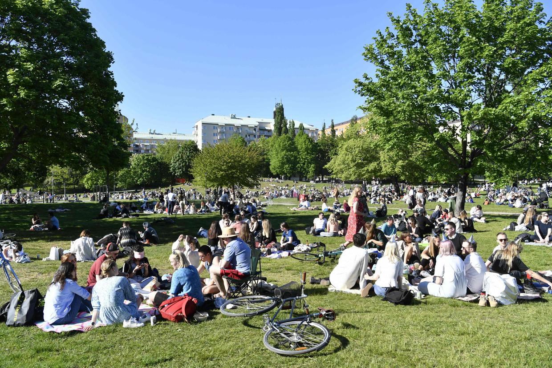 In een park in Stockholm komen mensen bij elkaar. Beeld AFP
