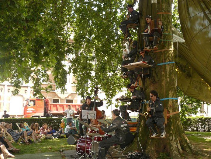 Archiefbeeld: de eeuwenoude plataan op het Prudens Van Duyseplein doet zelfs dienst als locatie voor concerten.