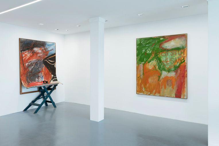 Werken van Woody van Amen, te zien in Grimm Gallery. Beeld Cassander Eeftinck Schattenkerk