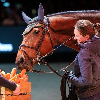 'Succesvolste paard ooit' gaat met pensioen