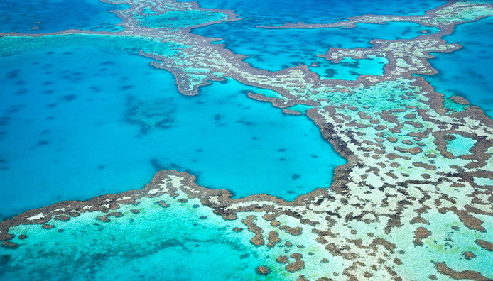 Vue aérienne de la Grande Barrière de corail.