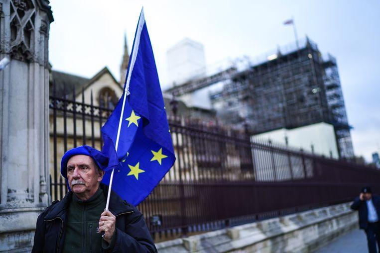 Anti-Brexit demonstranten in Londen. Beeld Getty Images