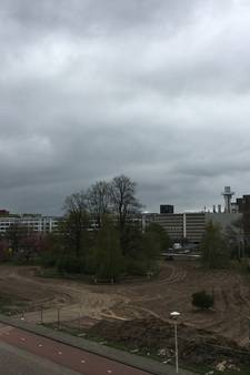 College Eindhoven: Provincie moet meer doen tegen kaalslag Gloeilampplantsoen