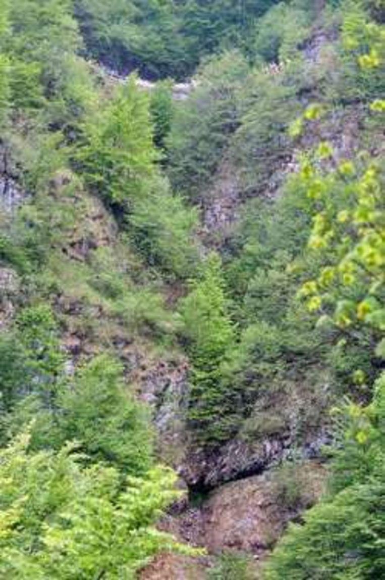 Horrillo dook 60 meter diep het ravijn in. Beeld UNKNOWN