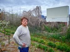 Varkensbedrijf opnieuw onder loep: onderzoek naar verband dode coniferen en chemische luchtwasser