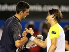 """Djokovic dégoûte Ferrer: """"Je ne pense pas pouvoir jouer mieux que ça"""""""