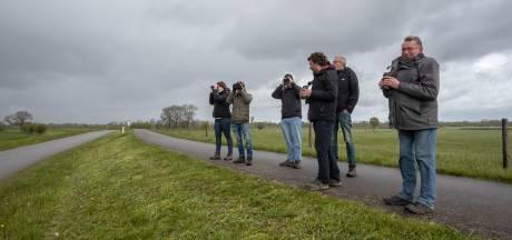 Vogelaars uit hele land hopen op glimp van jufferkraanvogel bij Voorst: 'Ik heb er een beetje de pest in'