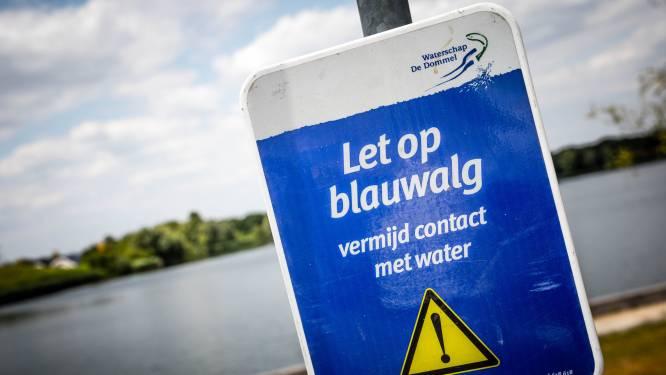 Negatief zwemadvies 't Smokkelstrand Chaam door blauwalg