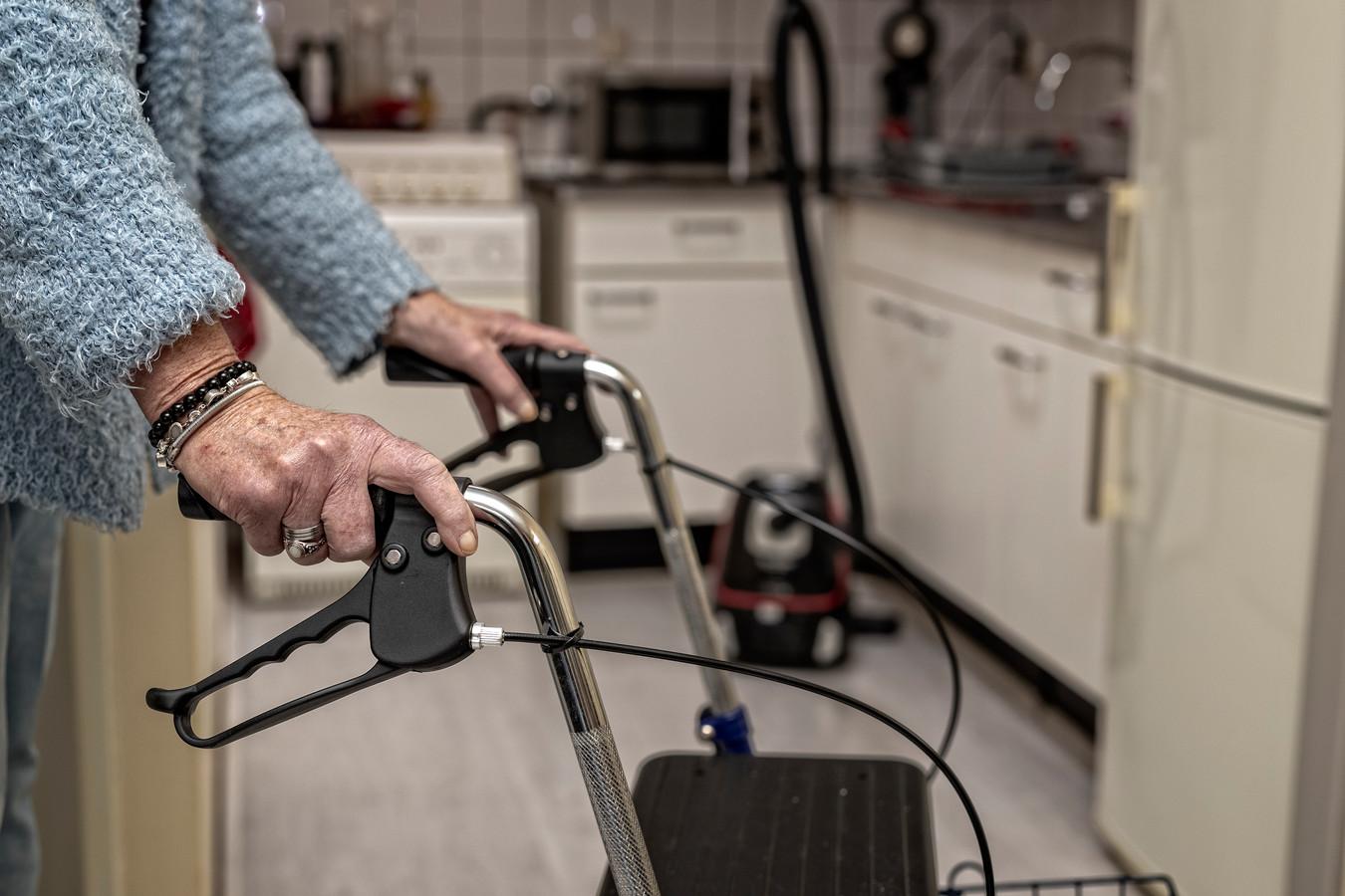 Ondersteuning vanuit de Wmo kan vele vormen krijgen: van een rollator of scootmobiel tot huishoudelijke hulp of hulpverleners die huisbezoeken afleggen.