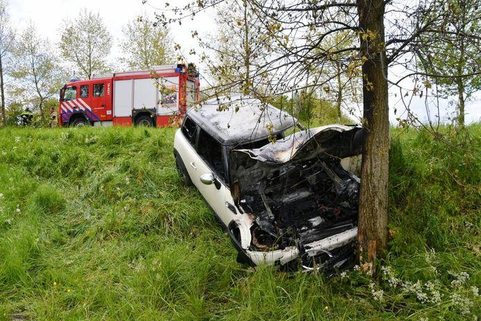 De auto reed tegen een boom en vloog in brand.