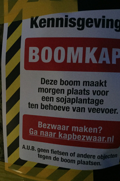 Milieudefensie 'kapt bomen' in Middelburg