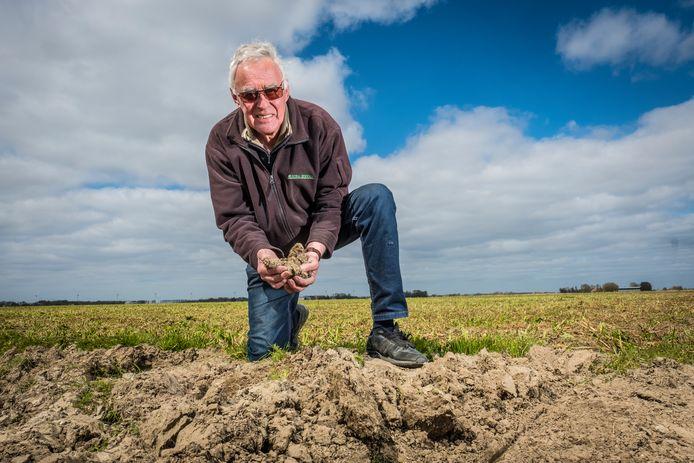 Boer Arnold van Woerkom is trots op de staat van zijn bodem, waarop hij gekneusde mosterdplanten heeft liggen.