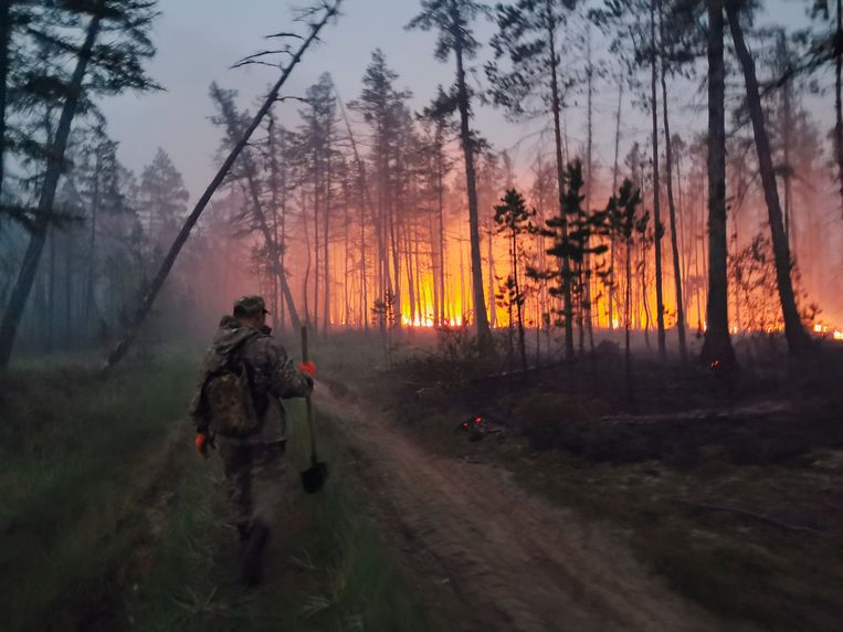 Een vrijwilliger probeert het vuur tegen te houden in de regio Jakoetië. Beeld AP