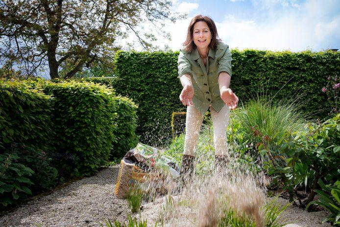 Onze tuinexperte geeft tips hoe je onkruid op verschillende soorten grond de baas bent.