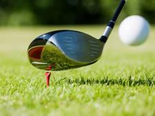 3 jaar cel voor half dood slaan van Poolse landgenoot in Holten met golfclub