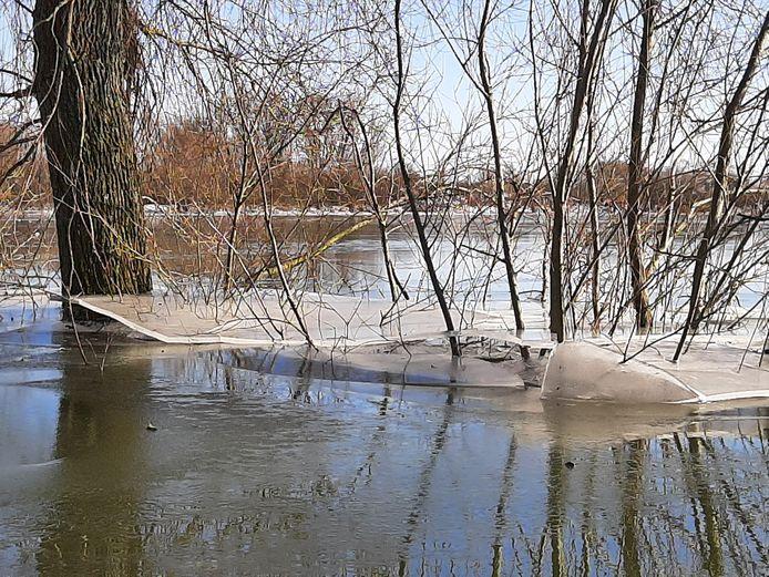 Het waterpeil in de Wageningse uiterwaarden zakt. Dat maakt het ijs onveiliger, omdat het gaat scheuren.