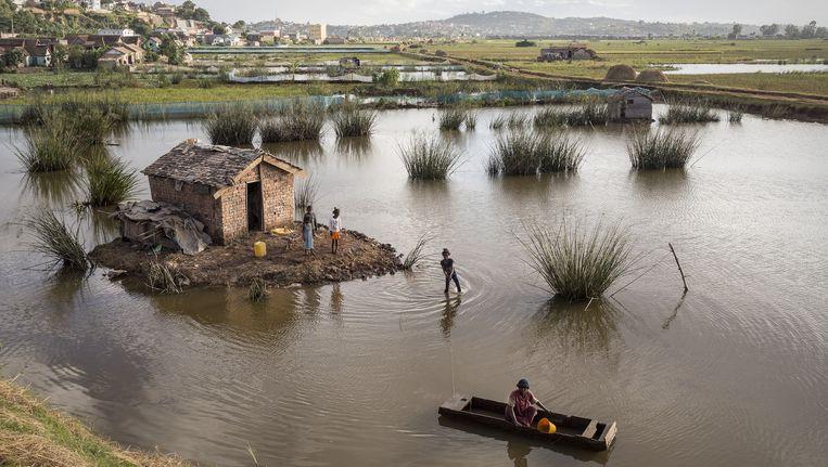 In de buurt van de hoofdstad Antananarivo, in het noordelijke deel van het land, is een huisje door overstromingen geïsoleerd geraakt Beeld Sven Torfinn / de Volkskrant