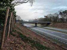Kaalslag markeert start aanleg eerste wildviaduct in de Achterhoek