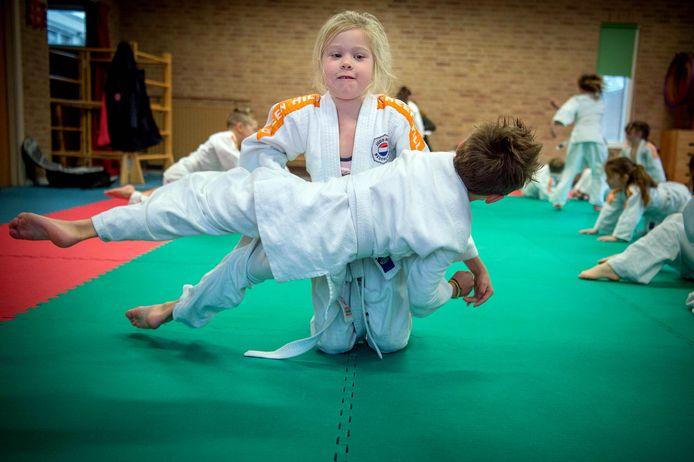 Judo bij 't Kloskerhufke in Deest