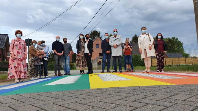 """Vier regenboogzebrapaden in Lille: """"Voor verdraagzaamheid en respect voor diversiteit"""""""